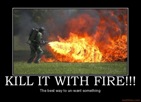 kill-it-with-fire-demotivational-poster-1235695993